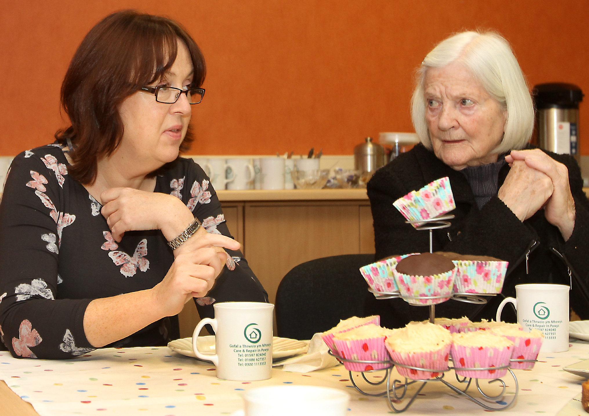 Tea Party Older Peoples Commission