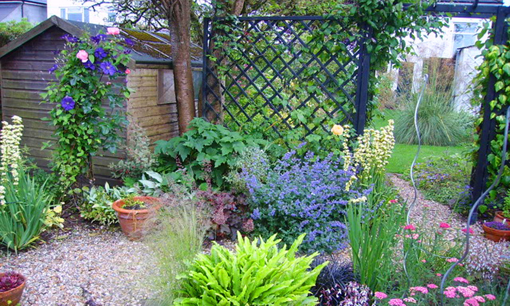 Rhiwbina garden