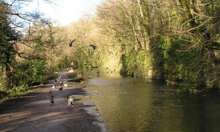Glamorganshire-Canal