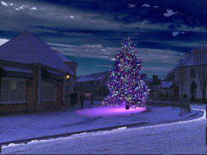 Christmas tree Rhiwbina