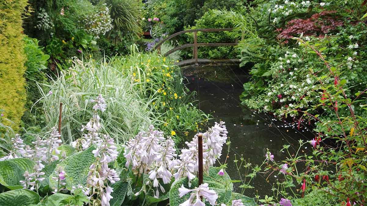 Pentyrch Open Gardens