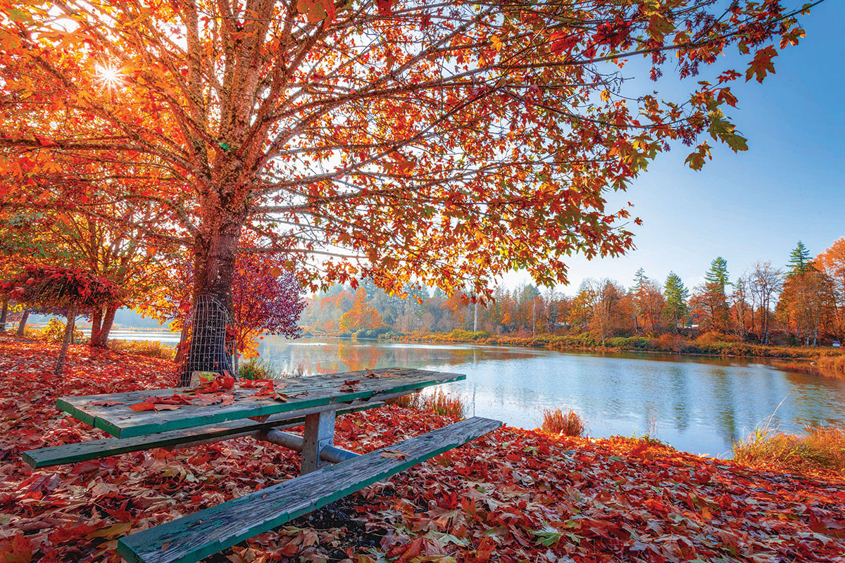 things-to-do-in-autumn